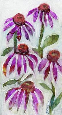 Echinacea Poster by Julie Maas