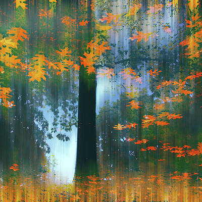 Poster featuring the photograph Echoes Of Autumn by Jessica Jenney