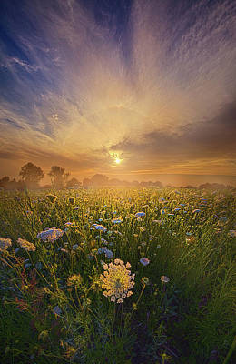 Echos The Sound Of Silence Poster by Phil Koch