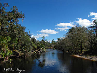 Poster featuring the photograph Econlockhatchee River by Barbara Bowen