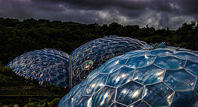 Eden Project Cornwall Poster by Martin Newman