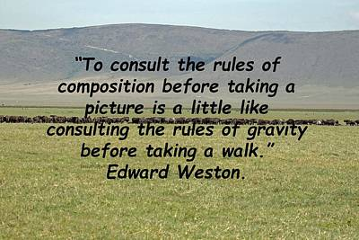 Edward Weston Quote Poster