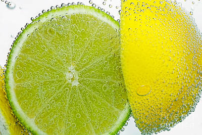 Effervescent Lime And Lemon By Kaye Menner Poster