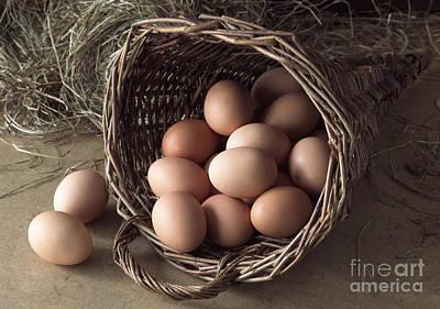 Eggs In Wicker Cornucopia Poster by Gerard Lacz