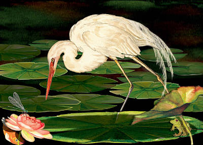 Egret Fishing In Lily Pads Poster by Anne Beverley-Stamps