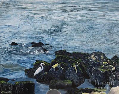 Egret On Shore Of Barnegat Bay Poster by Barbara Barber