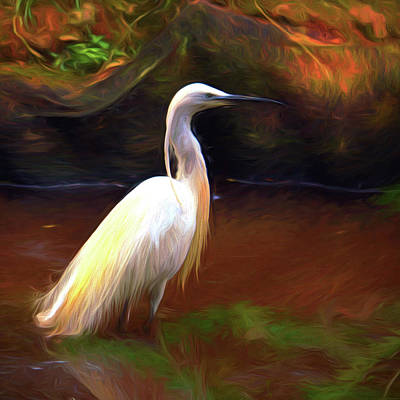Egret Painting Poster by Sharon Lisa Clarke