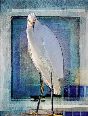 Egret Portrait Poster