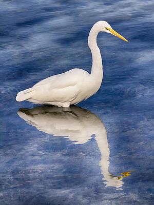 Egret Reflection On Blue Poster