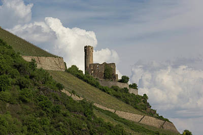 Ehrenfels Castle 04 Poster by Teresa Mucha