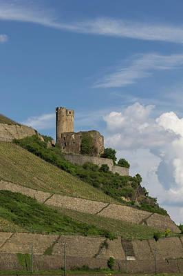 Ehrenfels Castle 05 Poster by Teresa Mucha