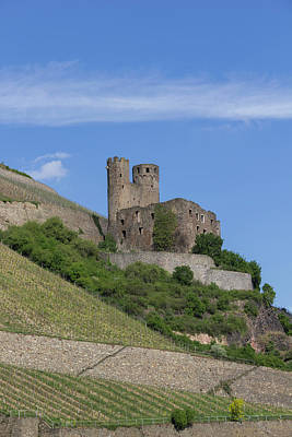 Ehrenfels Castle 07 Poster by Teresa Mucha