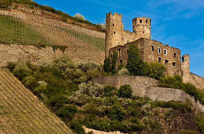 Ehrenfels Castle Ruin Poster