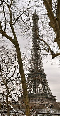 Eiffel Tower Through Branches Poster