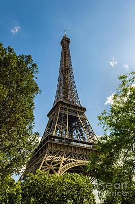 Eiffel Tower Through Trees Poster