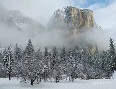 Poster featuring the photograph El Capitan Majesty - Yosemite Np by Sandra Bronstein