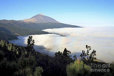 El Teide Above The Clouds Poster