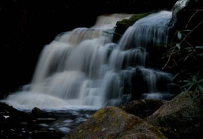 Elakala Falls In Shays Run Poster by Dan Sproul