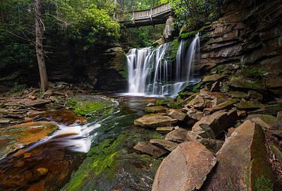 Elakala Falls On Shays Run Blackwater Falls State Park Poster by Rick Dunnuck