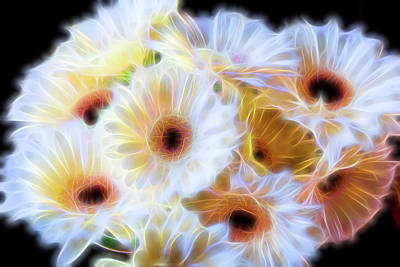 Electric White Dasies  Poster