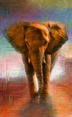 Elephant 1 Poster by Caito Junqueira