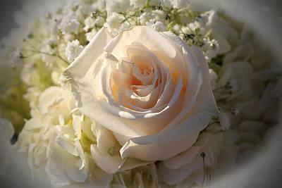 Elegant White Roses Poster by Cynthia Guinn