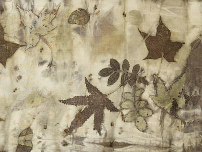elements of autumn II Poster by Carolyn Doe