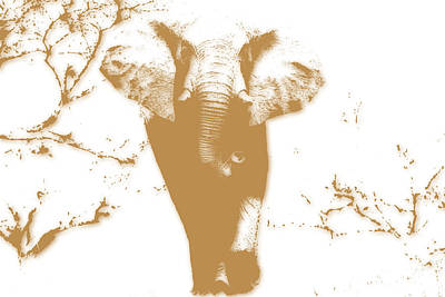 Elephant 2 Poster by Joe Hamilton
