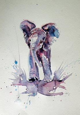 Elephant Baby Poster by Kovacs Anna Brigitta