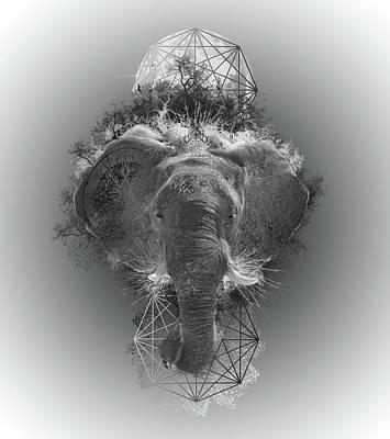 Elephant Poster