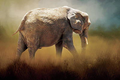Poster featuring the photograph Elephant In The Mist by David and Carol Kelly