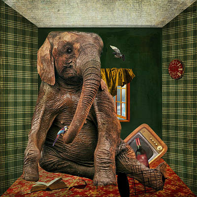 Elephant In The Room Poster by Terry Fleckney