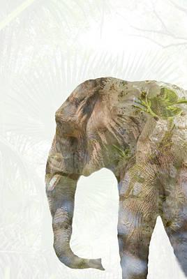 Elephant Palms Poster