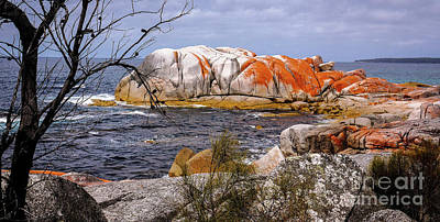 Elephant Rock - Bay Of Fires Poster