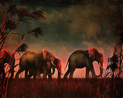 Elephants Walking Together Poster