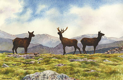 Poster featuring the painting Elk In The Evening by Anne Gifford