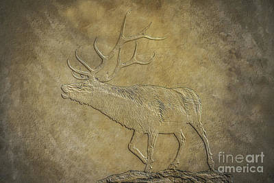 Elk On Bronze Texture Poster by Randy Steele