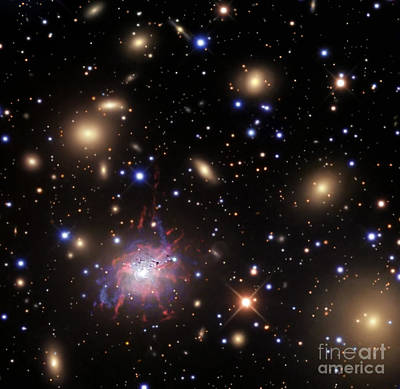 Elliptical Galaxy Ngc 1275 Poster by R Jay GaBany