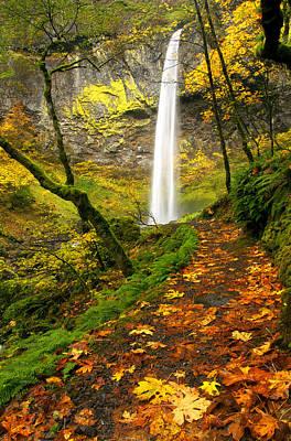 Elowah Autumn Trail Poster