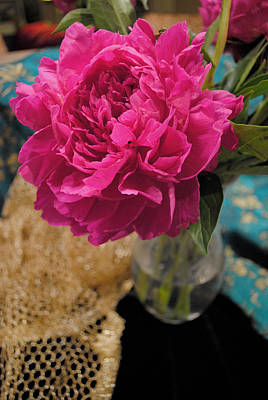 Poster featuring the photograph Emily's Peonies  by Kate Word