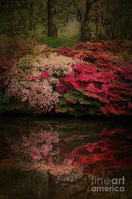 Enchanted Garden  Poster by Jasna Buncic
