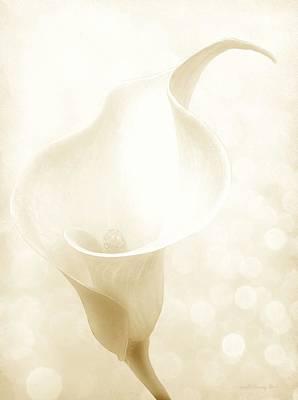 Enchanting Poster