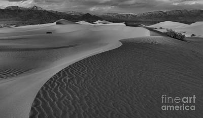 Endless Dunes Black And White Poster