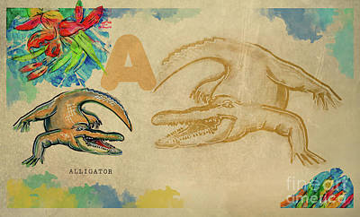 Poster featuring the drawing English Alphabet , Alligator  by Ariadna De Raadt