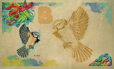 Poster featuring the drawing English Alphabet , Bird by Ariadna De Raadt
