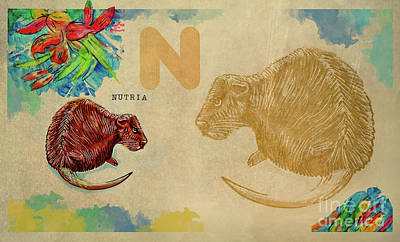 Poster featuring the drawing English Alphabet , Nutria by Ariadna De Raadt