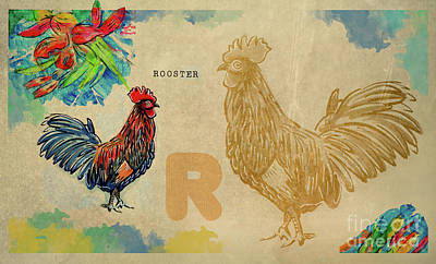 Poster featuring the drawing English Alphabet , Rooster  by Ariadna De Raadt