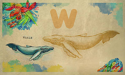 Poster featuring the drawing English Alphabet , Whale by Ariadna De Raadt