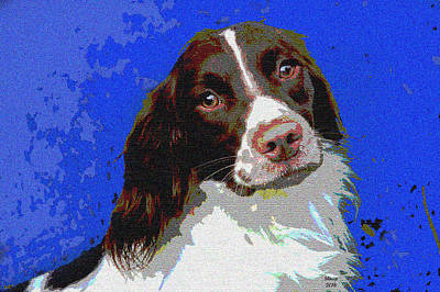 Brittany Spaniel Poster by Charles Shoup
