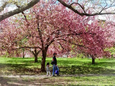 Enjoying The Cherry Trees Poster